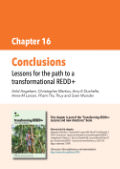 Conclusions: Lessons for the path to a transformational REDD+