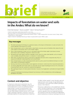 Impacts of forestation on water and soils in the Andes: What do we know?