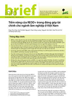 Tiềm năng của REDD+ trong đóng góp tài chính cho ngành lâm nghiệp ở Việt Nam