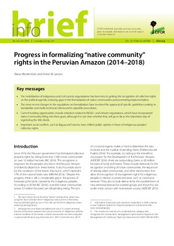"Progress in formalizing ""native community"" rights in the Peruvian Amazon (2014-2018)"
