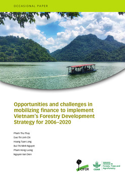 Opportunities and challenges in mobilizing finance to implement Vietnam's Forestry Development Strategy for 2006-2020