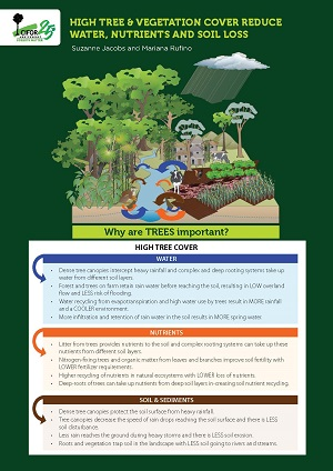 High tree & vegetation cover reduce water, nutrients and soil loss