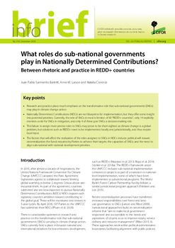 What roles do sub-national governments play in Nationally Determined Contributions? Between rhetoric and practice in REDD+ countries