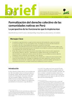 Formalización del derecho colectivo de las comunidades nativas en Perú: La perspectiva de los funcionarios que lo implementan