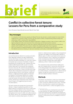 Conflict in collective forest tenure: Lessons for Peru from a comparative study