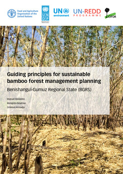 Guiding principles for sustainable bamboo forest management planning: Benishangul-Gumuz Regional State (BGRS)