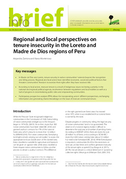 Regional and local perspectives on tenure insecurity in the Loreto and Madre de Dios regions of Peru