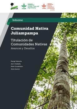 Comunidad Nativa Juliampampa: Estudio Titulacion de Comunidades Nativas –  Avances y Desafios