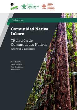 Comunidad Nativa Inkare: Estudio Titulacion de Comunidades Nativas –  Avances y Desafios