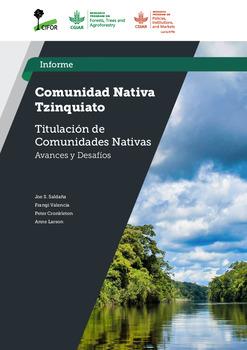 Comunidad Nativa Tzinquiato: Estudio Titulacion de Comunidades Nativas –  Avances y Desafios