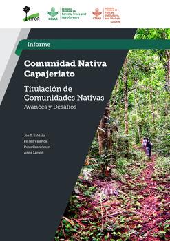 Comunidad Nativa Capajeriato: Estudio Titulacion de Comunidades Nativas –  Avances y Desafios