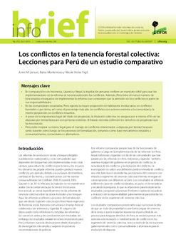 Los conflictos en la tenencia forestal colectiva: Lecciones para Perú de un estudio comparativo