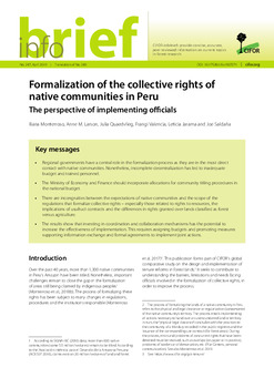 Formalization of the collective rights of native communities in Peru: The perspective of implementing officials