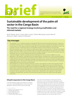 Sustainable development of the palm oil sector in the Congo Basin: The need for a regional strategy involving smallholders and informal markets