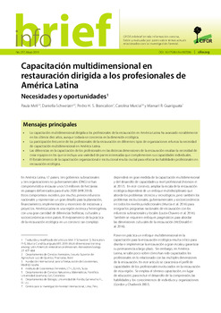 Capacitación multidimensional en restauración dirigida a los profesionales de América Latina: Necesidades y oportunidades