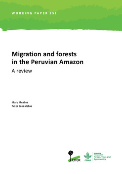 Migration and forests in the Peruvian Amazon: A review