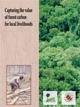 Capturing the value of forest carbon for local livelihoods: opportunities under the clean development mechanisms of the Kyoto protocol
