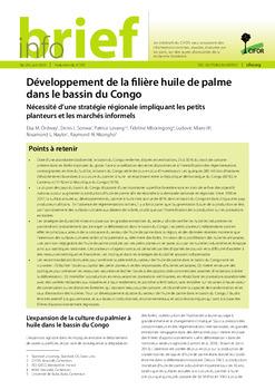 Développement de la filière huile de palme dans le bassin du Congo: Nécessité d'une stratégie régionale impliquant les petits planteurs et les marchés informels