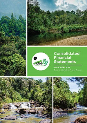 Consolidated Financial Statements 2018: 31 December 2018