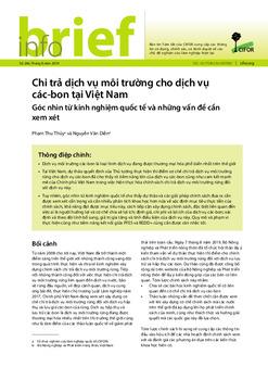 Chi trả dịch vụ môi trường cho dịch vụ các-bon tại Việt Nam: Góc nhìn từ kinh nghiệm quốc tế và những vấn đề cần xem xét