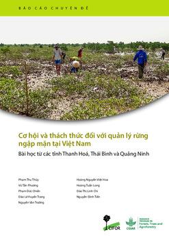 Cơ hội và thách thức đối với quản lý rừng ngập mặn tại Việt Nam: Bài học từ các tỉnh Thanh Hoá, Thái Bình và Quảng Ninh