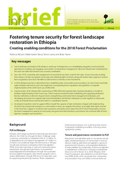 Fostering tenure security for forest landscape restoration in Ethiopia: Creating enabling conditions for the 2018 Forest Proclamation