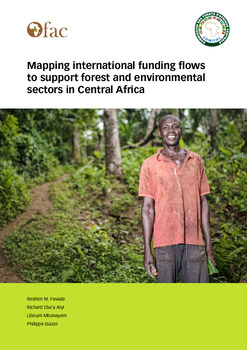 Mapping international funding flows to support forest and environmental sectors in Central Africa
