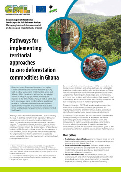 Pathways for implementing territorial approaches to zero deforestation commodities in Ghana