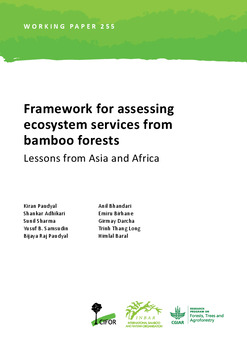 Framework for assessing ecosystem services from bamboo forests: Lessons from Asia and Africa