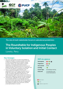 The Roundtable for Indigenous Peoples in Voluntary Isolation and Initial Contact: Loreto, Peru