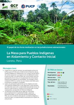 La Mesa para Pueblos Indígenas en Aislamiento y Contacto Inicial: Loreto, Peru