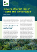 Drivers of forest loss in Papua and West Papua