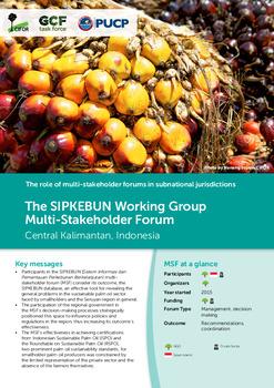 The SIPKEBUN Working Group Multi-Stakeholder Forum: Central Kalimantan, Indonesia
