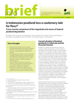 Is Indonesian peatland loss a cautionary tale for Peru? A two-country comparison of the magnitude and causes of tropical peatland degradation