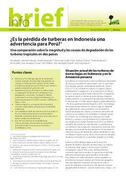 ¿Es la pérdida de turberas en Indonesia una advertencia para Perú? Una comparación sobre la magnitud y las causas de degradación de las turberas tropicales en dos países