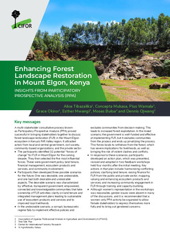 Enhancing Forest Landscape Restoration in Mount Elgon, Kenya: Insights from participatory prospective analysis (PPA)