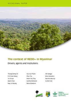 The context of REDD+ in Myanmar: Drivers, agents and institutions
