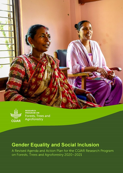 Gender Equality and Social Inclusion: A Revised Agenda and Action Plan for the CGIAR Research Program on Forests, Trees and Agroforestry 2020-2021