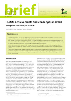 REDD+ achievements and challenges in Brazil: Perceptions over time (2015-2019)
