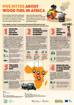 Five Myths About Wood Fuel in Africa