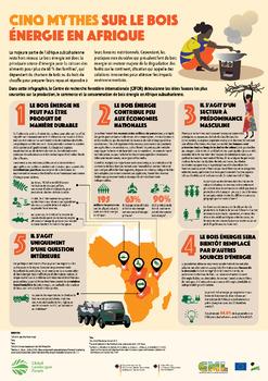 Cinq Mythes Sur Le Bois Énergie en Afrique