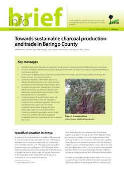 Towards sustainable charcoal production and trade in Baringo County