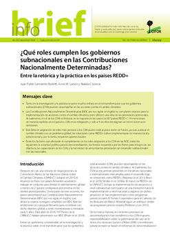 ¿Qué roles cumplen los gobiernos subnacionales en las Contribuciones Nacionalmente Determinadas?: Entre la retórica y la práctica en los países REDD+