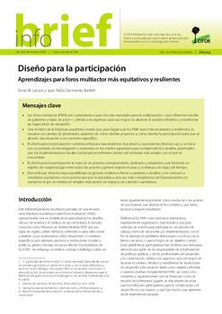 Diseño para la participación: Aprendizajes para foros multiactor más equitativos y resilientes