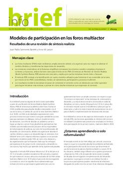 Modelos de participación en los foros multiactor: Resultados de una revisión de síntesis realista