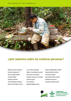 ¿Qué sabemos sobre las turberas peruanas?
