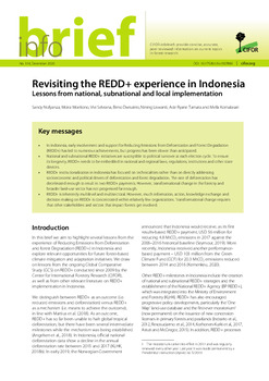 Revisiting the REDD+ experience in Indonesia: Lessons from national, subnational and local implementation