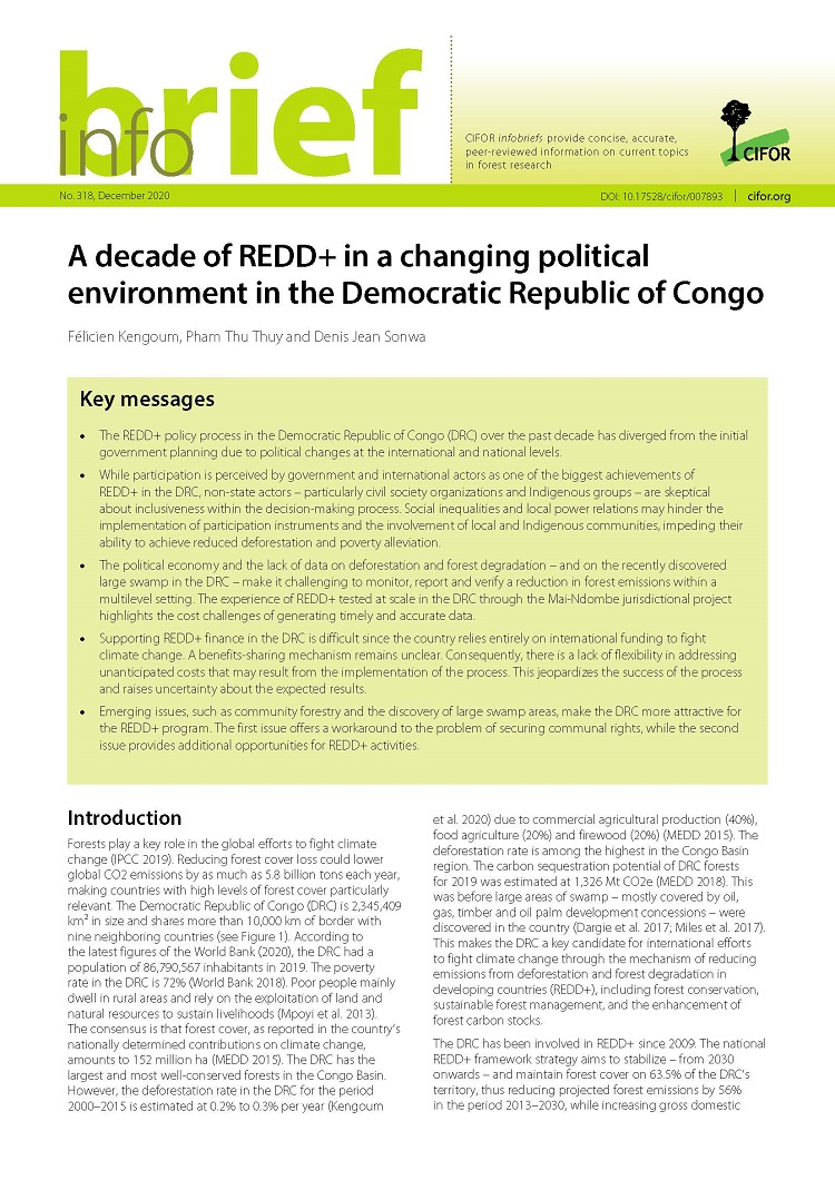 A decade of REDD+ in a changing political environment in the Democratic Republic of Congo