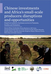Chinese investments and Africa\'s small-scale producers: disruptions and opportunities