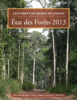 Fili�re bois d'oeuvre et gestion des for�ts naturelles: les bois tropicaux et les forêts d'Afrique centrale face aux évolutions des marchés